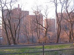 Polo Grounds Apartment