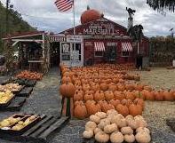 Marshall's Farm Stand II