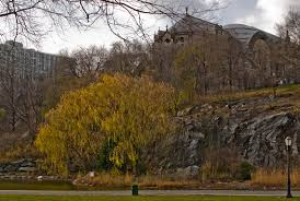 Morningside Park.jpg