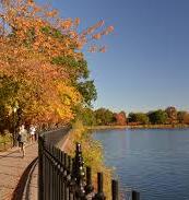Central Park Resevoir II