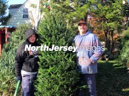 Hasbrouck Heights Men's Association Xmas Tree Sales