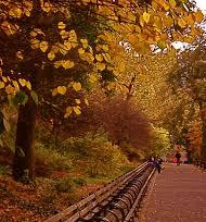 Riverside Park II