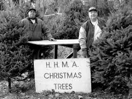 Hasbrouck Heights Men's Association Xmas Tree Sales VIII