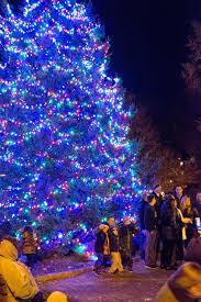 Northport Christmas Tree