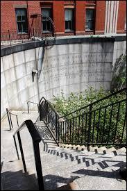 Shransky Steps.jpg