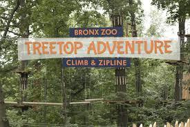 Bronx Zoo II