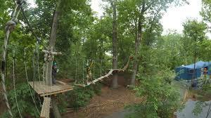 Bronx Zoo IV