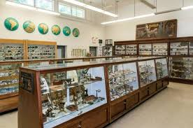Franklin Mineral Museum VI.jpg