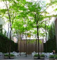 paley-garden-nyc.jpg
