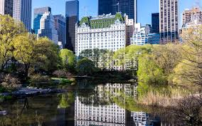 The Plaza Hotel on Central Park South