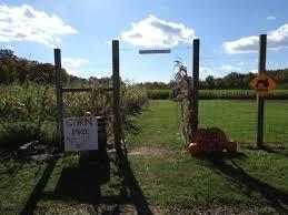 Hacklebarney Farm VI