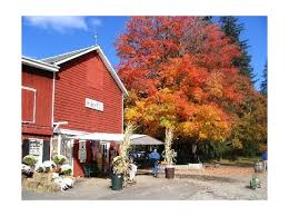 Hacklebarney Cider Mill Farm