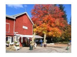 Hacklebarney Cider Mill Farm