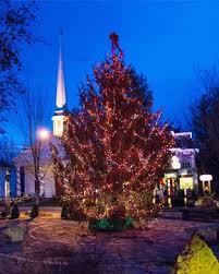 The Woodstock, NY Christmas Tree