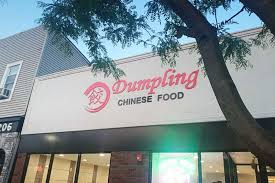 Dumpling Chinese Food