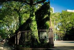 St. Vartan Park