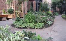 Juan Alonso Community Gardens